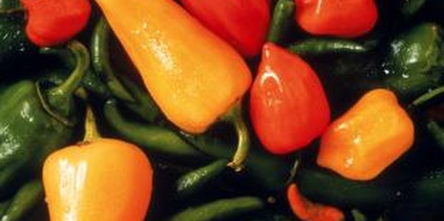 Keep pepper plants warm to help them produce lots of fruit.