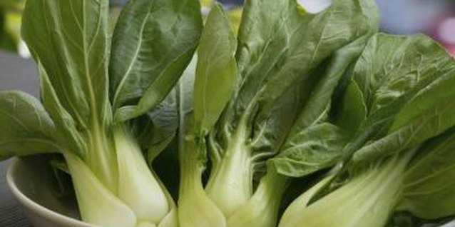 How to Transplant Bok Choy