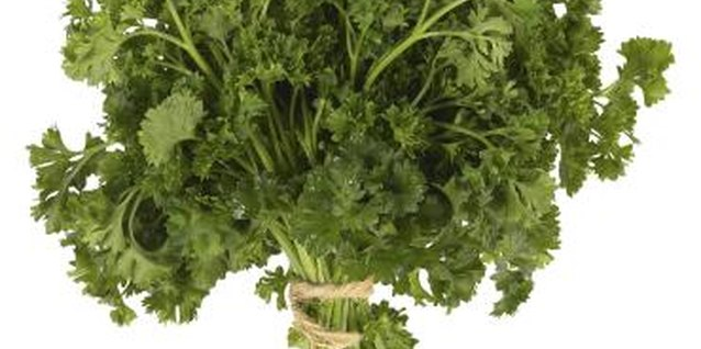 How to Divide Parsley