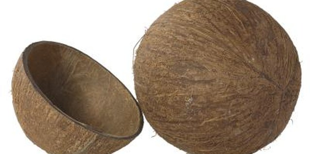 Coconut may be as effective as medication in treating acute diarrhea.
