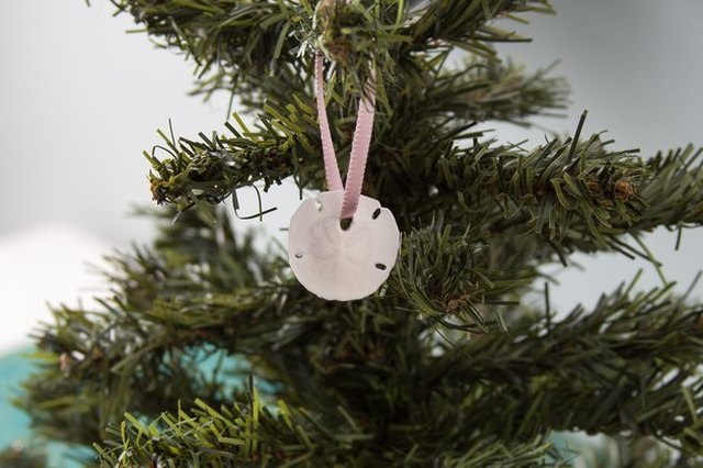 Sand dollar hung with a pink ribbon from a Christmas tree