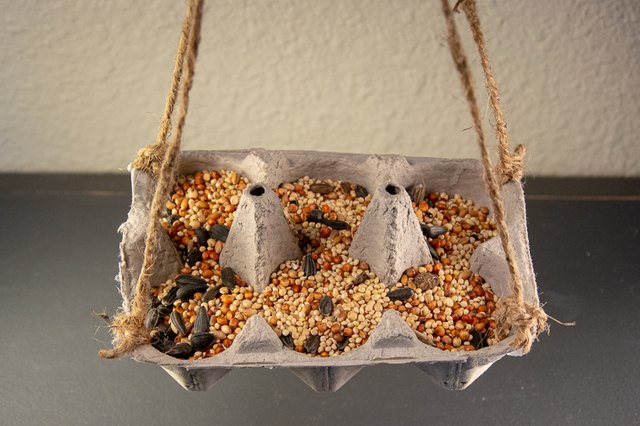 an image of a bird feeder made from an egg carton