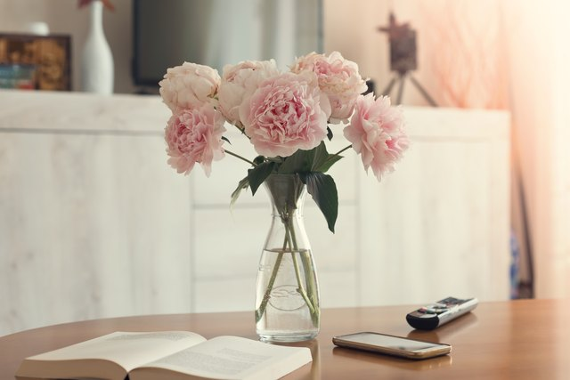 Vase of peonies in the living room