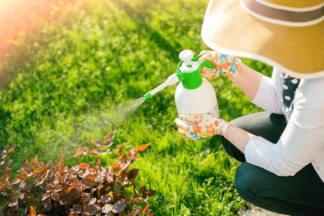 Woman spraying flowers in the garden