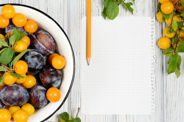 sheet of paper surrounded by fresh fruits plums and pencil
