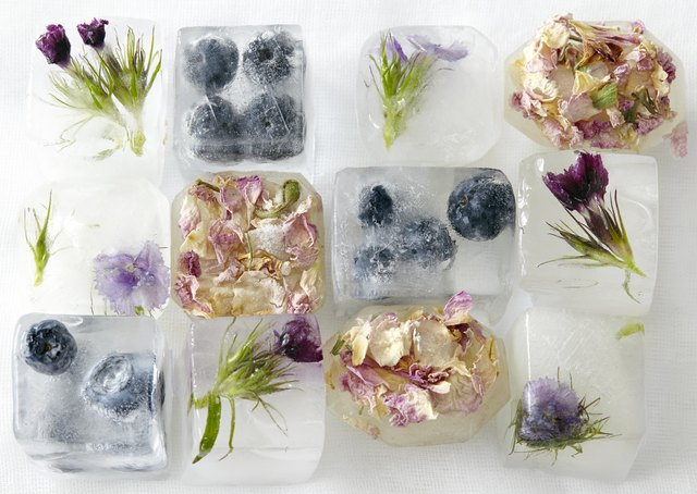 Flowers and fruit frozen in ice-cubes