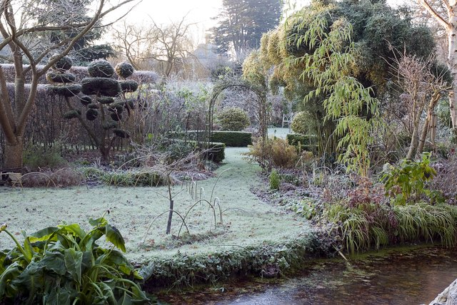 Frosty winter garden scene with frozen pond