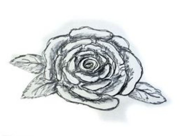 How To Draw A Rose Easily With Pictures Ehow