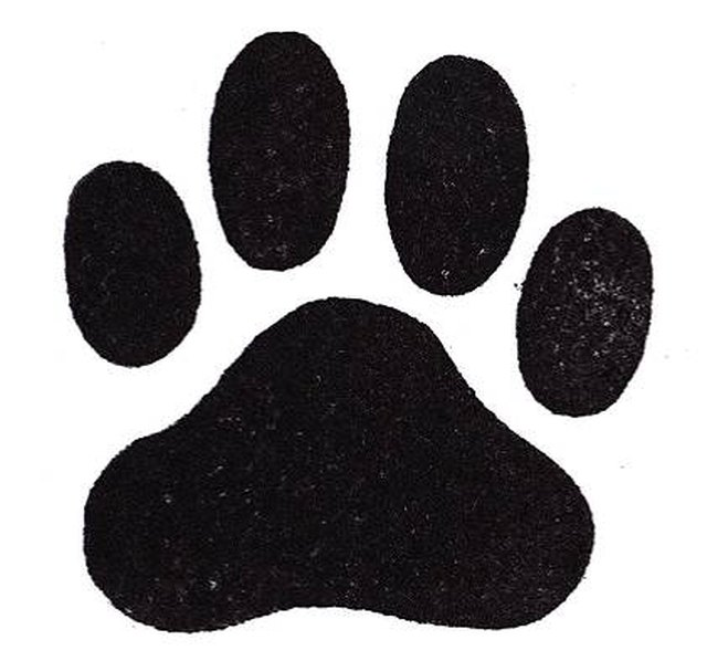 How To Draw Dog Paws Ehow
