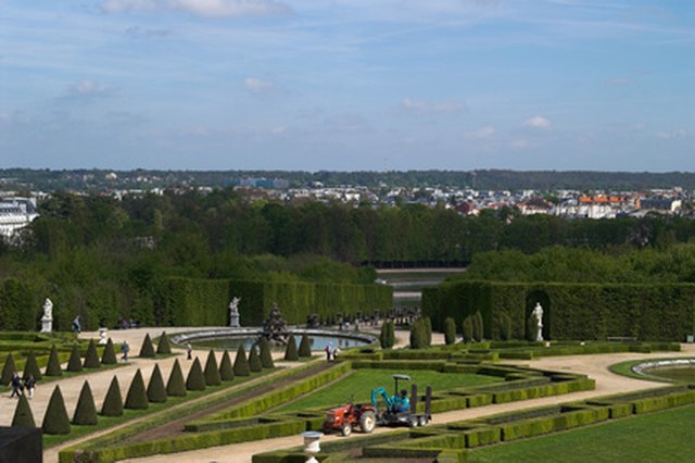 Plants in the Gardens at Versailles   eHow