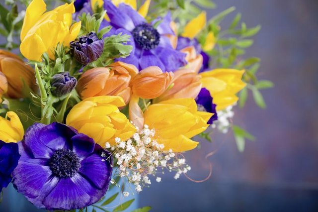 Colorful tulips and anemones satisfy the eye without adding scent.