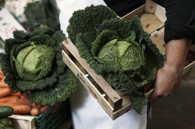 Male market stallholder holding green cabbages