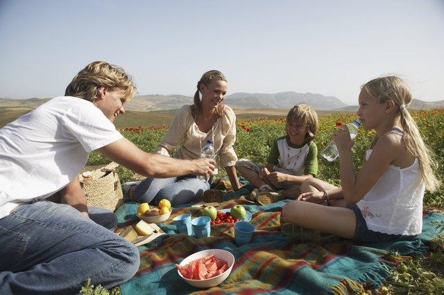 Family of four having picnic, smiling