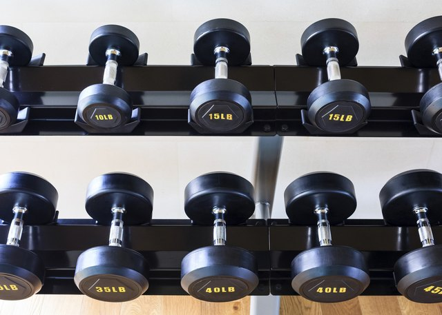 Dumb bells lined up in a fitness