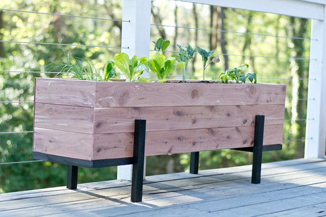 How to Build and Grow a Salad Garden On Your Balcony   eHow