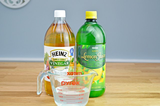 Natural Flea Remedy Apple Cider Vinegar