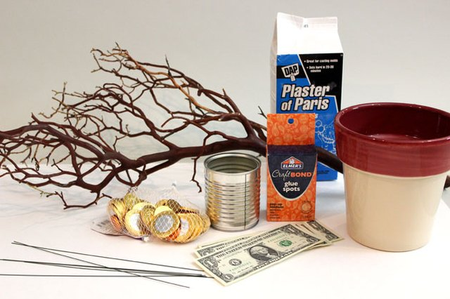 Gather your materials to make the money tree.