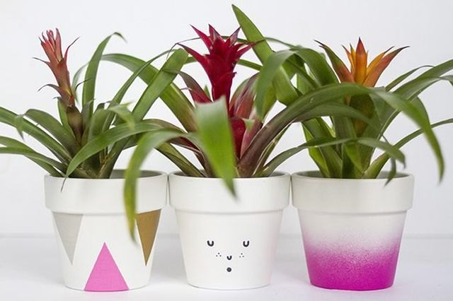 Add an epic level of cuteness by painting the plant pots.