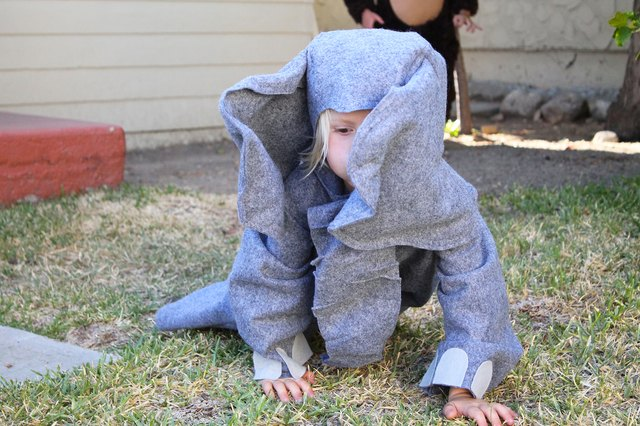 Your little elephant is ready for adventures!