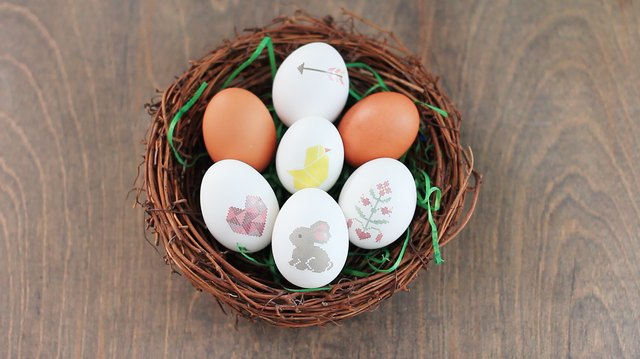 Cutest! Eggs! Ever!