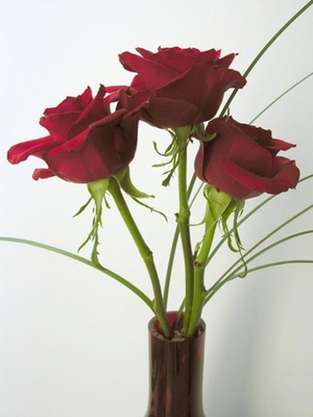 Make Your Cut Roses Last Longer