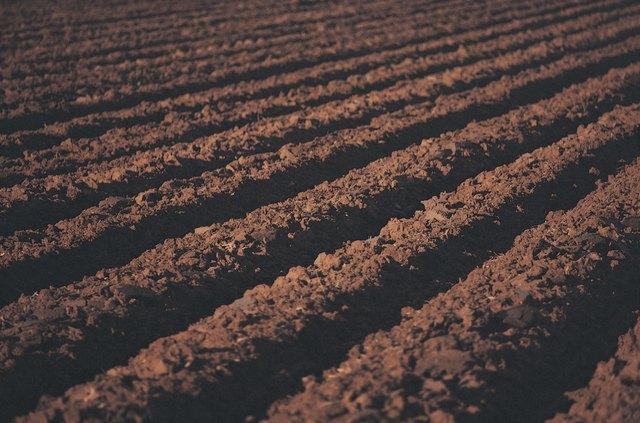 Freshly Tilled Soil