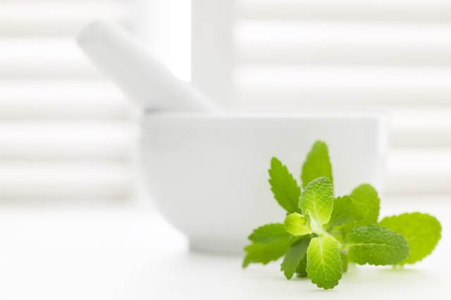 How To Make Mint Oil Ehow