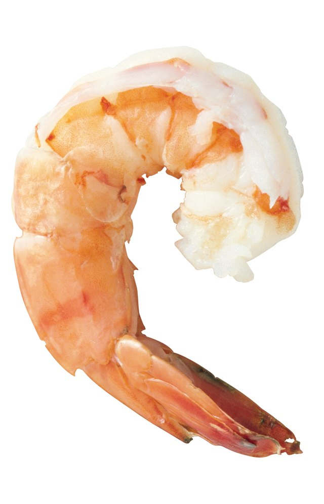 How Long Does it Take for Shrimp to Grow Big Enough to Eat