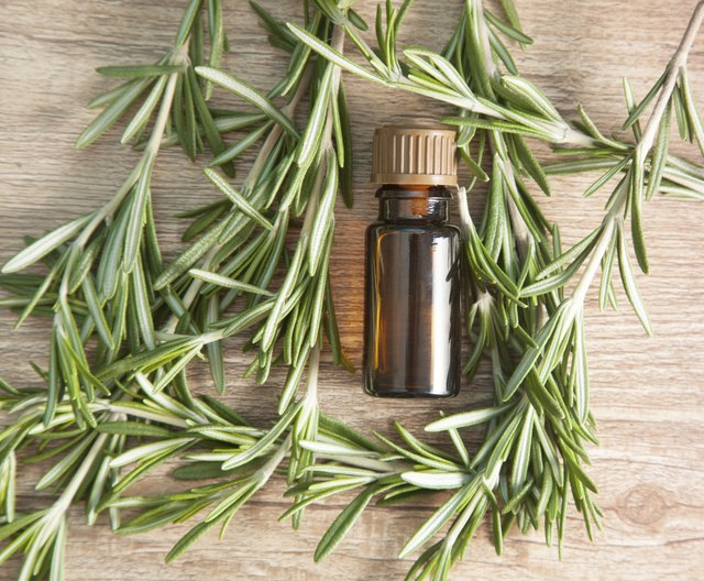 Rosemary oil's naturally invigorating scent boosts alertness.