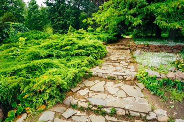 Reuse stone and brick to create walkways and garden edging.