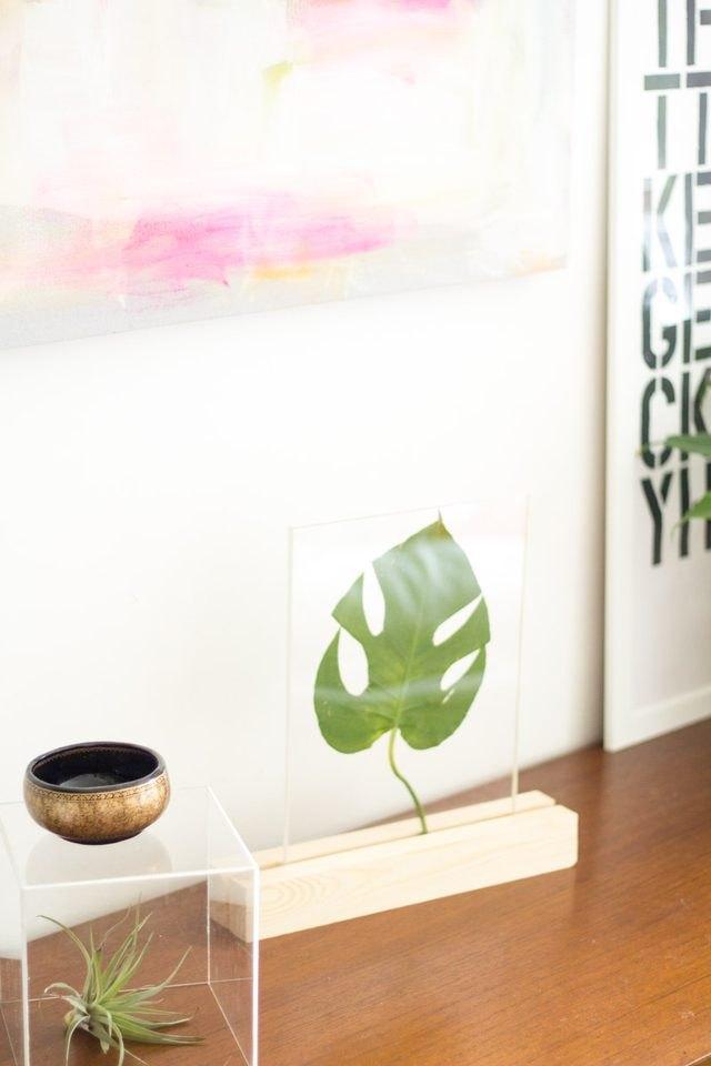 Plexiglass framed leaf