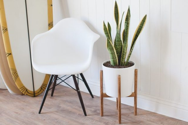 Mid-Century Inspired Plant Stand