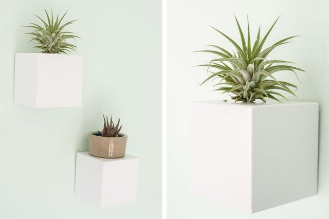White cube wall planters