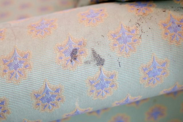 Ink pen stain on a fabric couch