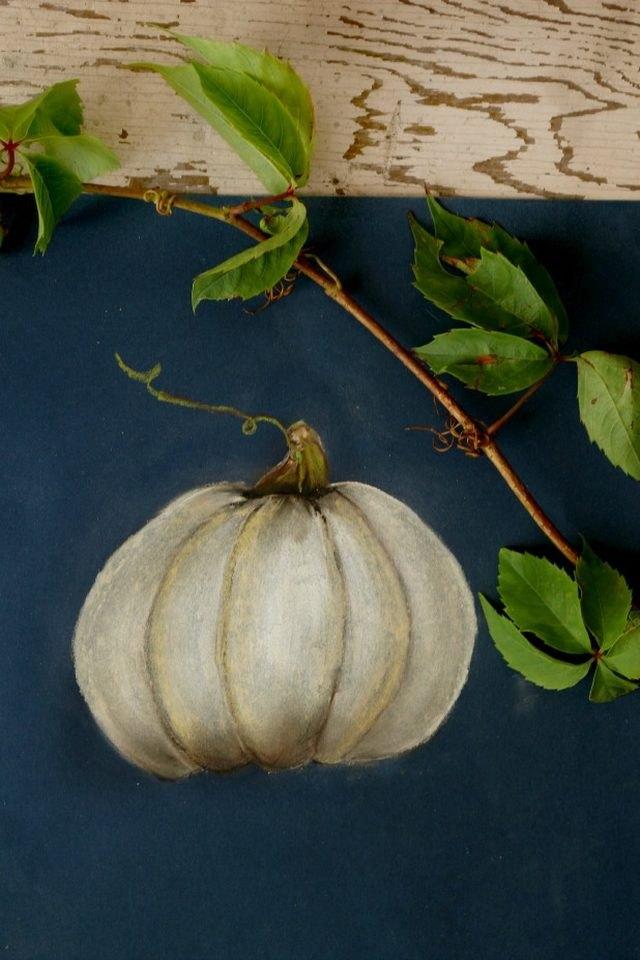 Pastel illustration of a pumpkin.