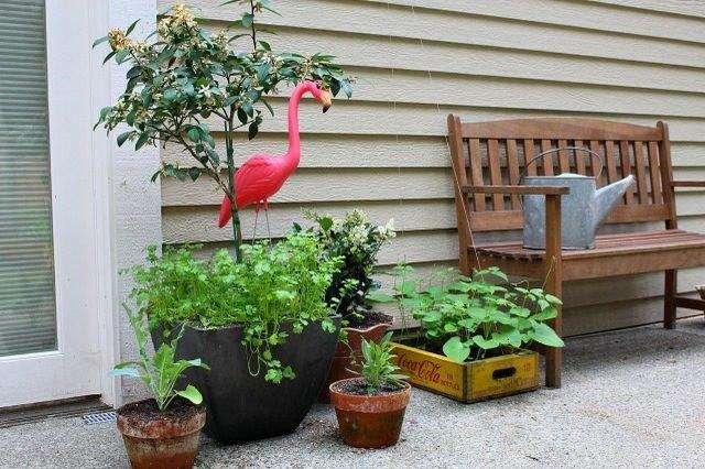 A container garden.