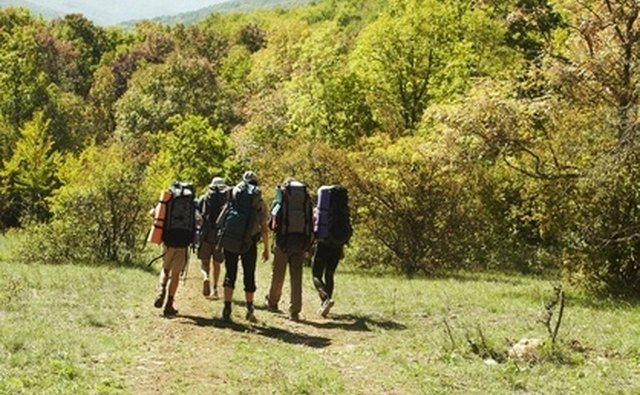 Enjoy hiking trails at Fort McAllister Historic Park