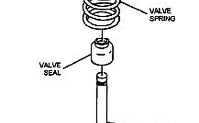 Valve spring and seal assembly