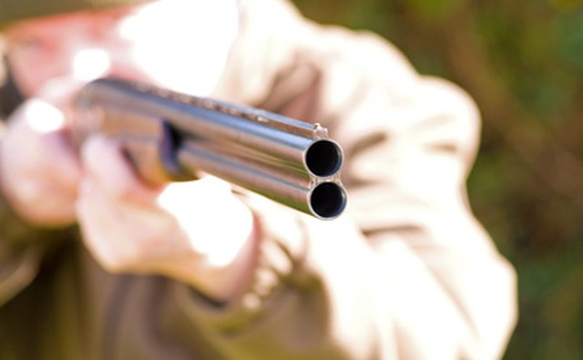 A man with a shotgun demonstrates sighting a target.