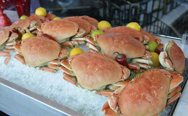 Dungeness crab are most abundant in Washington's waters.