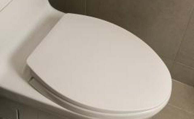 A typical RV toilet uses about 1/2 gallon of water to flush.