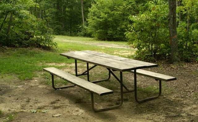 Many south Georgia campgrounds offer picnic areas.
