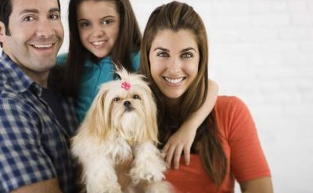 Include the pet in the family newsletter name.