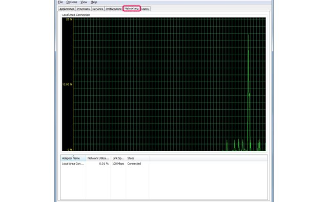 The Networking tab of the Task Manager.