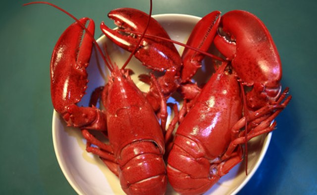 FedEx will ship seafood such as live lobsters.