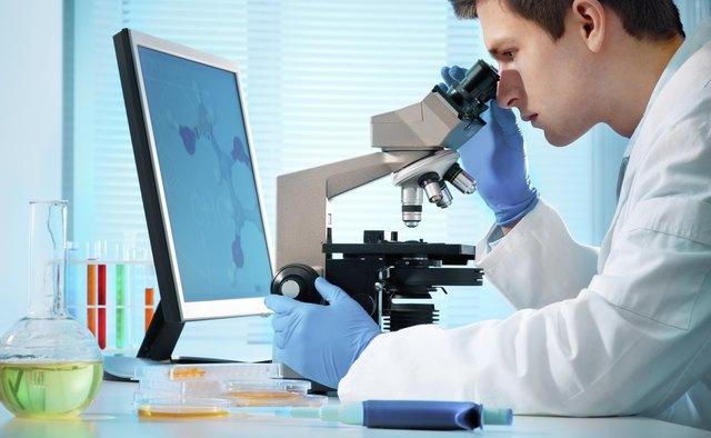 laboratory technician at work