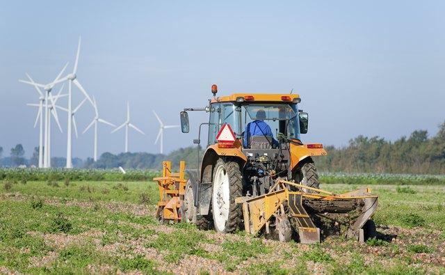 Farmer on tractor harvesting onions