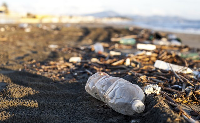 pollution, plastic water bottle on a beach