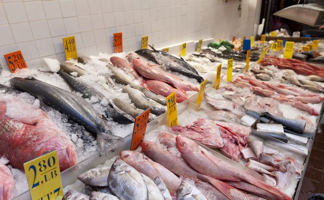 An assortment of fresh fish for sale in a market.