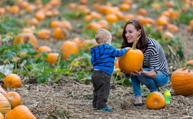 Boy and mom in pumpkin patch